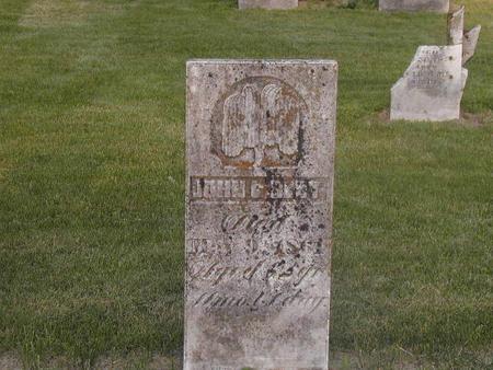 BEST, JOHN GEORGE - Lee County, Iowa | JOHN GEORGE BEST