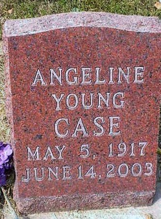 YOUNG CASE, ANGELINE - Lee County, Iowa | ANGELINE YOUNG CASE