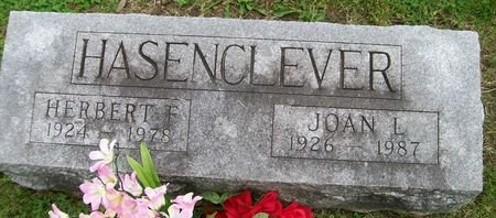 HASENCLEVER, JOAN L. - Lee County, Iowa   JOAN L. HASENCLEVER