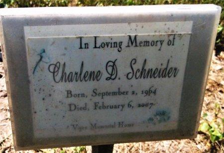 SCHNEIDER, CHARLENE DEBS - Lee County, Iowa   CHARLENE DEBS SCHNEIDER