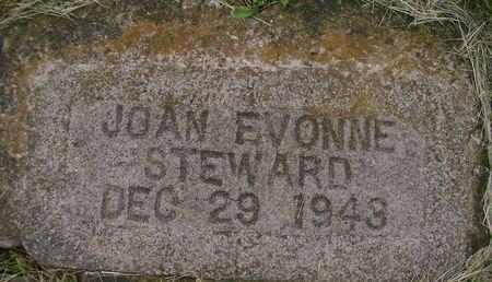 STEWARD, JOAN EVONNE - Lee County, Iowa | JOAN EVONNE STEWARD