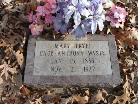 WASTE, MARY - Lee County, Iowa   MARY WASTE