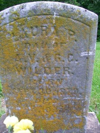 WILDER, LAURA P. - Lee County, Iowa | LAURA P. WILDER