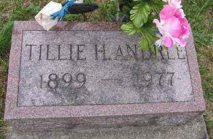 ANDRLE, TILLIE H. - Linn County, Iowa | TILLIE H. ANDRLE