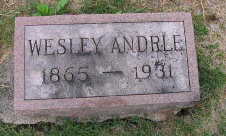 ANDRLE, WESLEY - Linn County, Iowa | WESLEY ANDRLE