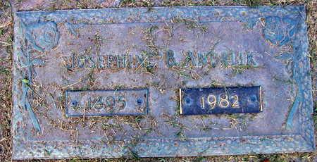 ANDRLIK, JOSEPHINE B. - Linn County, Iowa | JOSEPHINE B. ANDRLIK
