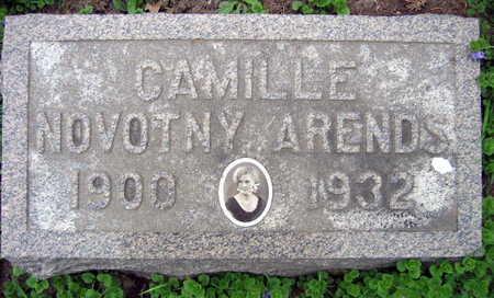 NOVOTNY ARENDS, CAMILLE - Linn County, Iowa | CAMILLE NOVOTNY ARENDS