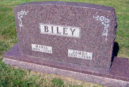 BILEY, JAMES - Linn County, Iowa | JAMES BILEY