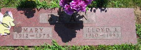BEAN, MARY - Linn County, Iowa | MARY BEAN