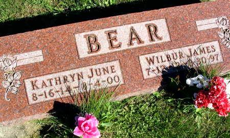 BEAR, WILBUR JAMES - Linn County, Iowa | WILBUR JAMES BEAR