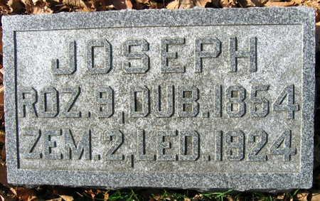 BEDNASEK, JOSEPH - Linn County, Iowa   JOSEPH BEDNASEK