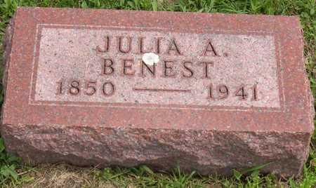 BENEST, JULIA A. - Linn County, Iowa | JULIA A. BENEST