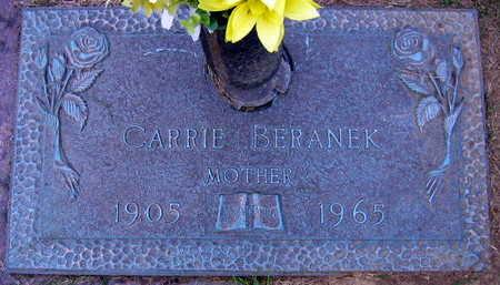 BERANEK, CARRIE - Linn County, Iowa | CARRIE BERANEK
