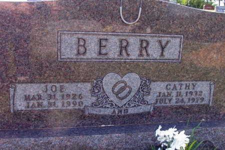 BERRY, JOE - Linn County, Iowa | JOE BERRY