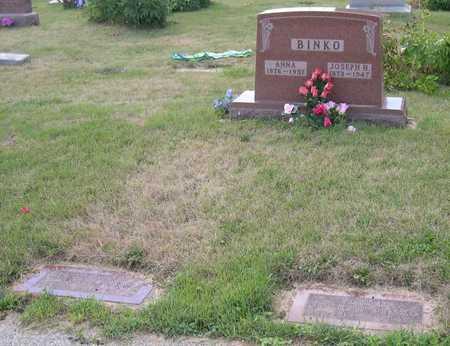 BINKO, FAMILY STONE - Linn County, Iowa   FAMILY STONE BINKO