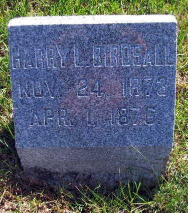BIRDSALL, HARRY L - Linn County, Iowa | HARRY L BIRDSALL