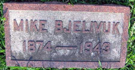 BJELIVUK, MIKE - Linn County, Iowa | MIKE BJELIVUK