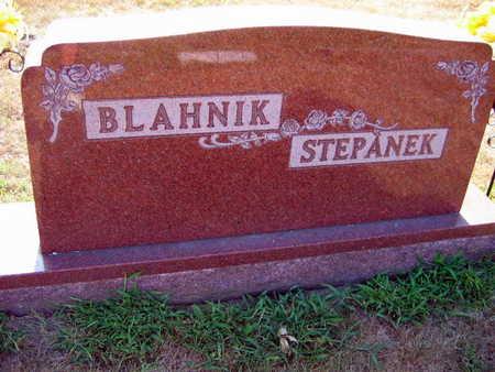 BLAHNIK STEPANEK, FAMILY STONE - Linn County, Iowa | FAMILY STONE BLAHNIK STEPANEK