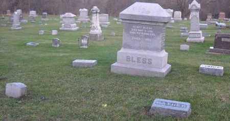 BLESS, FAMILY STONE - Linn County, Iowa   FAMILY STONE BLESS