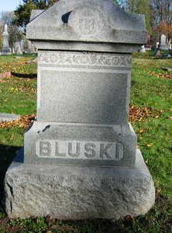 BLUSKI, FAMILY STONE - Linn County, Iowa | FAMILY STONE BLUSKI