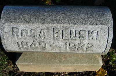 BLUSKI, ROSA - Linn County, Iowa   ROSA BLUSKI