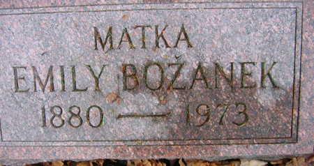BOZANEK, EMILY - Linn County, Iowa | EMILY BOZANEK