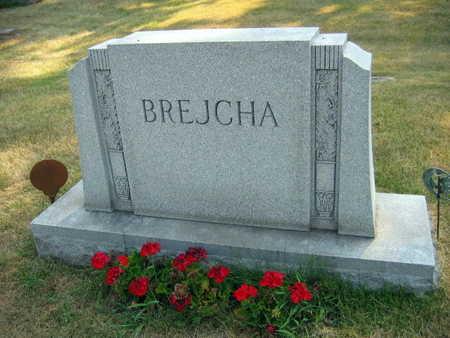 BREJCHA, FAMILY STONE - Linn County, Iowa | FAMILY STONE BREJCHA