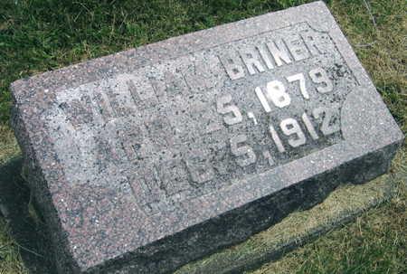 BRINER, WILLIAM - Linn County, Iowa | WILLIAM BRINER