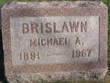 BRISLAWN, MICHAEL A. - Linn County, Iowa | MICHAEL A. BRISLAWN