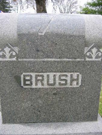 BRUSH, FAMILY STONE - Linn County, Iowa | FAMILY STONE BRUSH