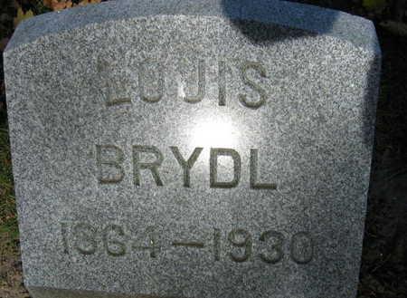 BRYDL, LOUIS - Linn County, Iowa | LOUIS BRYDL