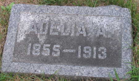 BUCHANAN, ADELIA A. - Linn County, Iowa | ADELIA A. BUCHANAN