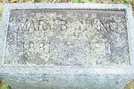 BUNTING, MARY - Linn County, Iowa | MARY BUNTING