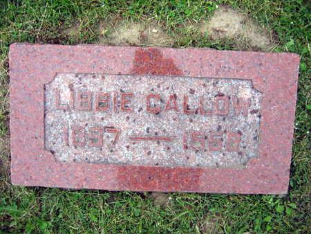 CALLOW, LIBBIE - Linn County, Iowa | LIBBIE CALLOW