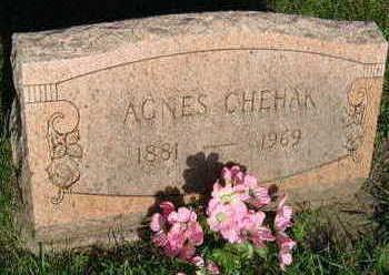 CHEHAK, AGNES - Linn County, Iowa | AGNES CHEHAK