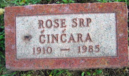 SRP CINCARA, ROSE - Linn County, Iowa | ROSE SRP CINCARA