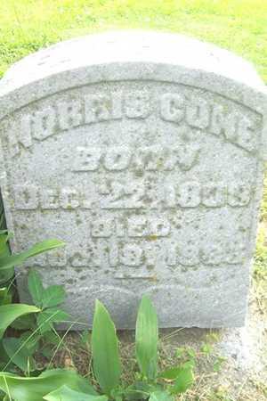 CONE, NORRIS - Linn County, Iowa | NORRIS CONE