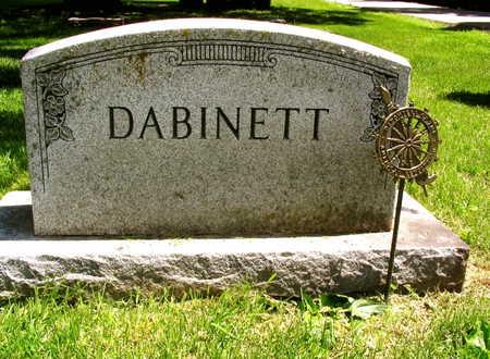 DABINETT, FAMILY STONE - Linn County, Iowa   FAMILY STONE DABINETT
