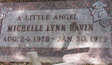 DAVIN, MICHELLE LYNN - Linn County, Iowa | MICHELLE LYNN DAVIN