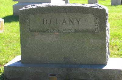 DELANY, FAMILY STONE - Linn County, Iowa | FAMILY STONE DELANY
