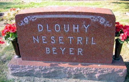 DLOUHY NESETRIL BEYER, FAMILY STONE - Linn County, Iowa | FAMILY STONE DLOUHY NESETRIL BEYER