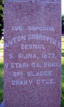 DOBROVSKY, ANTON - Linn County, Iowa | ANTON DOBROVSKY