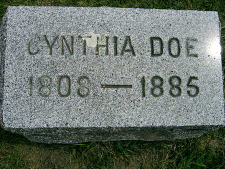 DOE, CYNTHIA - Linn County, Iowa | CYNTHIA DOE