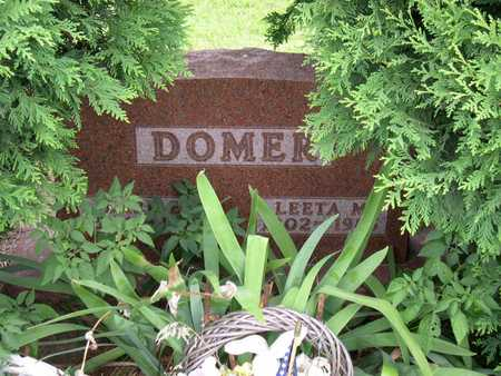 DOMER, EARL E. - Linn County, Iowa | EARL E. DOMER