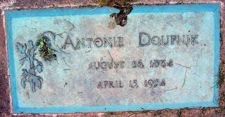 DOUPNIK, ANTONIE - Linn County, Iowa | ANTONIE DOUPNIK
