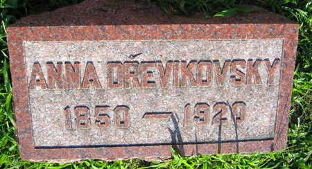 DREVIKOVSKY, ANNA - Linn County, Iowa | ANNA DREVIKOVSKY