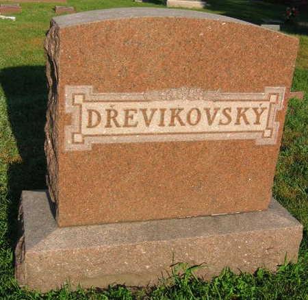 DREVIKOVSKY, FAMILY STONE - Linn County, Iowa   FAMILY STONE DREVIKOVSKY