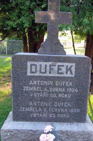 DUFEK, ANTONIE - Linn County, Iowa | ANTONIE DUFEK