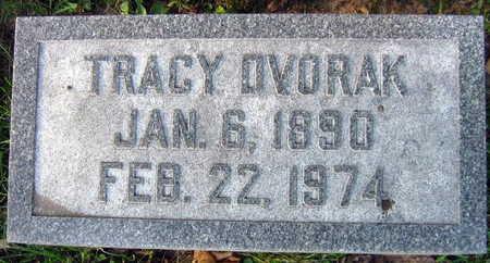 DVORAK, TRACY - Linn County, Iowa | TRACY DVORAK