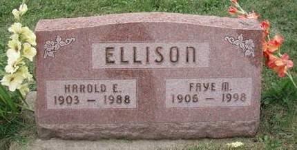 WORKMAN ELLISON, FAYE - Linn County, Iowa | FAYE WORKMAN ELLISON